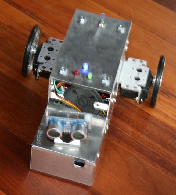 Roam-Bot, A Bot On His Own